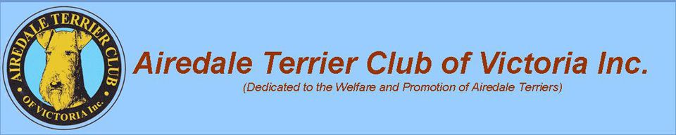 Airedale Terrier Club of Victoria (Australia)